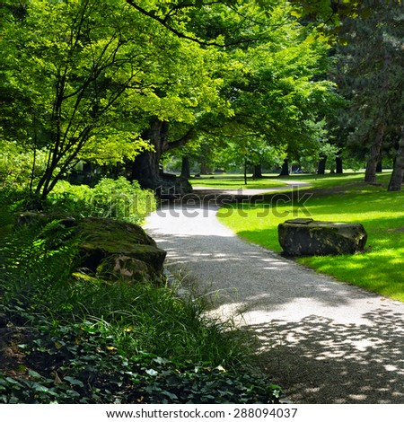 summer park with beautiful green lawns - stock photo