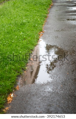 Summer rain did create puddles on the wet asphalt. View on the wet asphalt, puddles and green fresh grass that is washed by the rain. - stock photo