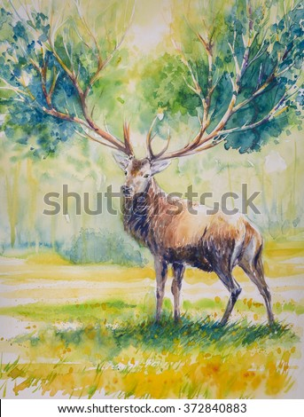 Summer.Red deer with big  horns on whose grow leaves.Picture created with watercolors. - stock photo