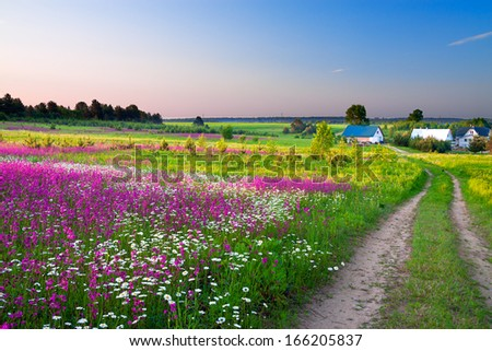 summer rural landscape with a blossoming meadow, the road and a farm - stock photo