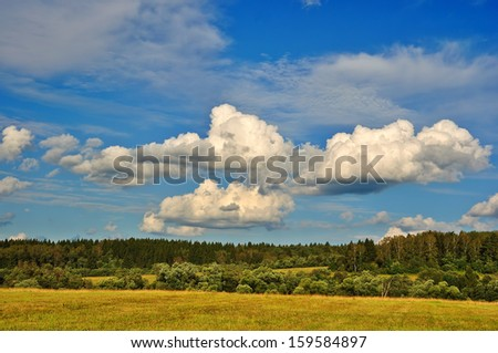 Summer rural landscape with cloudy sky, dry grass and trees                     - stock photo
