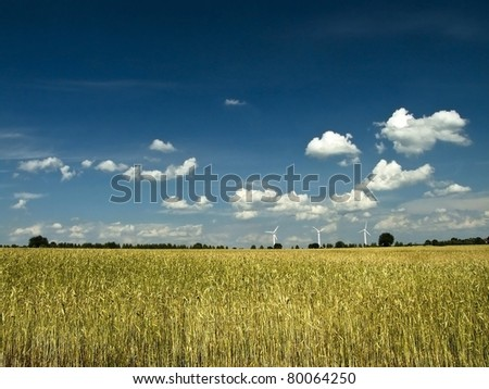 Summer rural landscape with yellow whear and windturbines - stock photo