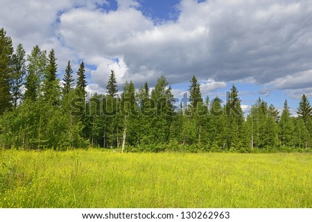 Summer's day. northern landscape - stock photo