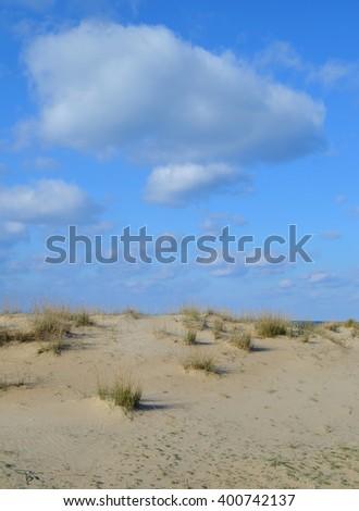 Summer Sand Dunes with Vegetation - stock photo