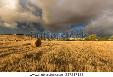 Summer showers hover over field of wheat - stock photo