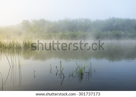 Summer sunrise over the river with a fog - stock photo
