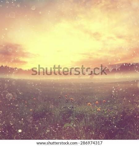 summer sunset landscape fantastic - stock photo