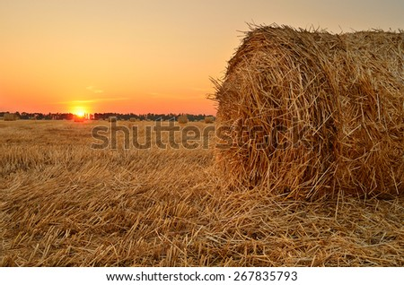 summer sunset on the field with rolls of straw - stock photo