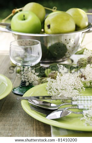 Summer table setting - stock photo
