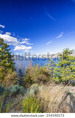 Summer Vegetation around Scenic Lake Okanagan, BC,  - stock photo