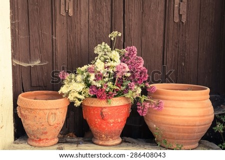 Summer wild flowers. Three vintage flowerpots with rose and pink  flowers in country garden. Copy space for your text - stock photo