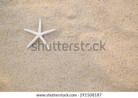 Summer 2015 with Star fish for your holiday activity - stock photo