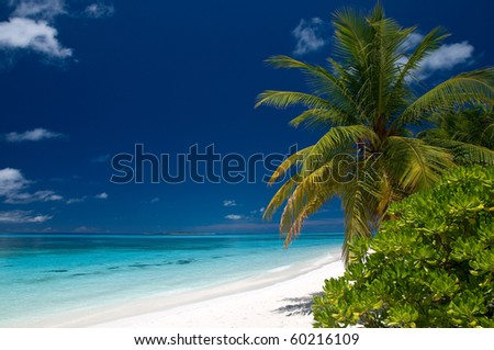 summertime on a tropical beach - stock photo