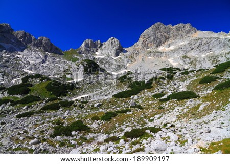 Summits of the limestone mountains covered with vegetation - stock photo