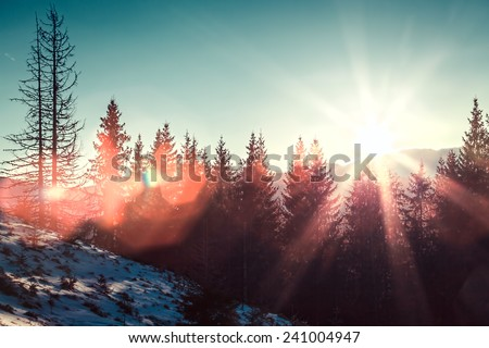 Sun and glare in winter mountains - stock photo