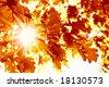 Sun beams and autumn leaves - stock photo