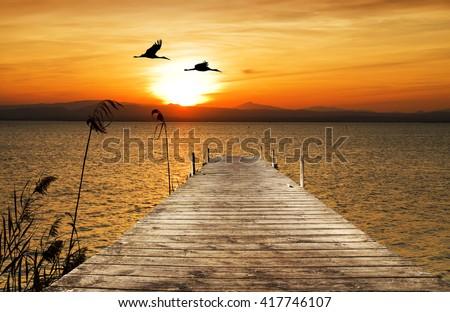 sun in the sea - stock photo