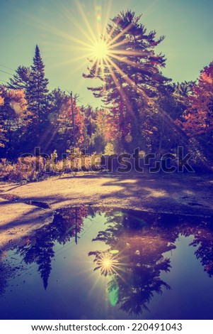 Sun light beams shine behind trees creating lens flare in a park landscape.  A large puddle in a parking lot reflects a mirror image of the sun and landscape.  Filtered for a retro, vintage look.  - stock photo