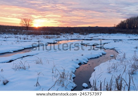 sun setting on snow covered wetlands of minnesota valley wildlife refuge in eagan and bloomington minnesota  - stock photo