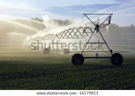 sun shines through the spray of a crop irrigation system - stock photo