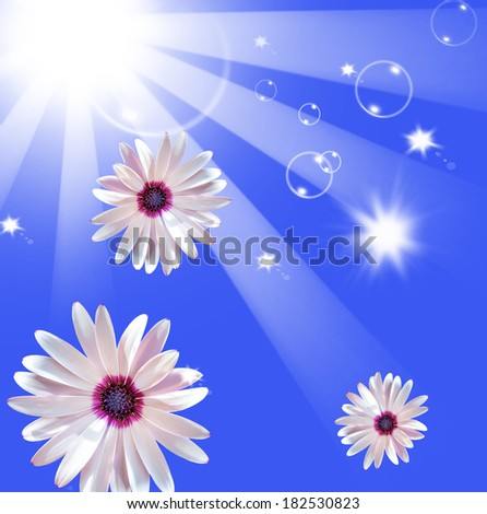 Sun shining beams floral blue sky background - stock photo