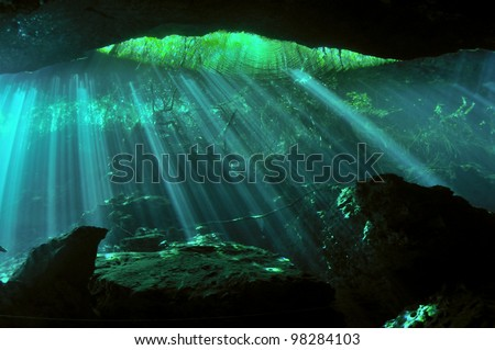 Sunbeams penetrating through the waters of the underwater cave with sunken trees in the background, Yucatan peninsular, Mexico - stock photo