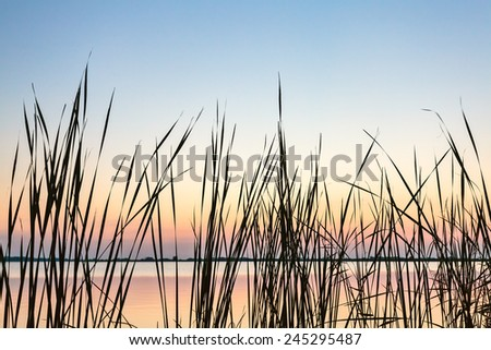 Sundown view of the Frisian Sneekermeer with reed in front, The Netherlands - stock photo