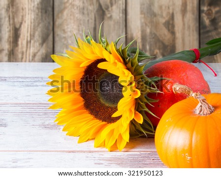 Sunflower and pumpkin on wooden table with nature background - stock photo