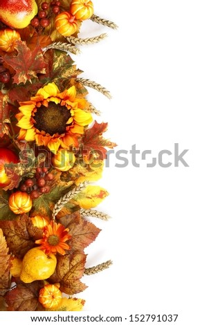 Sunflower, autumn leaves and fruits on white background. - stock photo