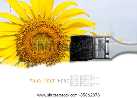 Sunflower painting background for your design - stock photo