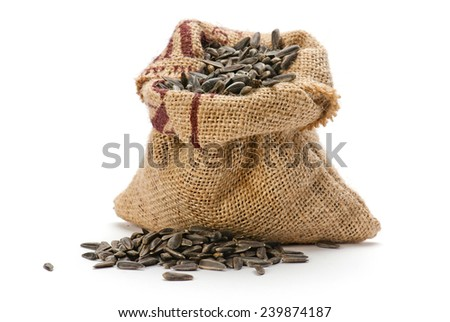 Sunflower seed in jute sack on white background - stock photo