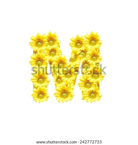 Sunflowers with alphabet letter M - stock photo