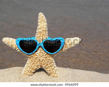 sunglasses on starfish - stock photo