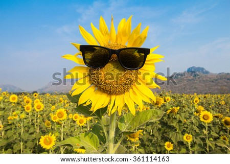 sunglasses sunflowers smile - stock photo