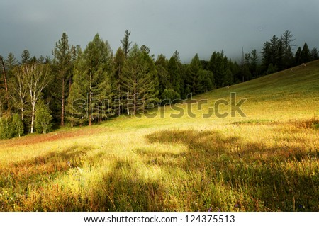 Sunlight after thunderstorm on mountain meadow - stock photo