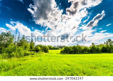 Sunlight breaking through the clouds over the field in the forest - stock photo