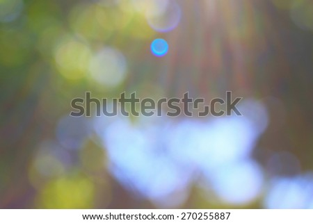 Sunlight in the morning summer day - stock photo