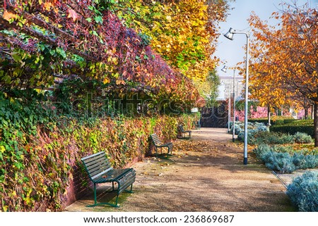 Sunlit park with benches and blue sky - stock photo