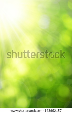 Sunny abstract green nature background - stock photo
