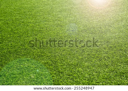 Sunny artificial green grass background with sun flare. Selective focus used. - stock photo