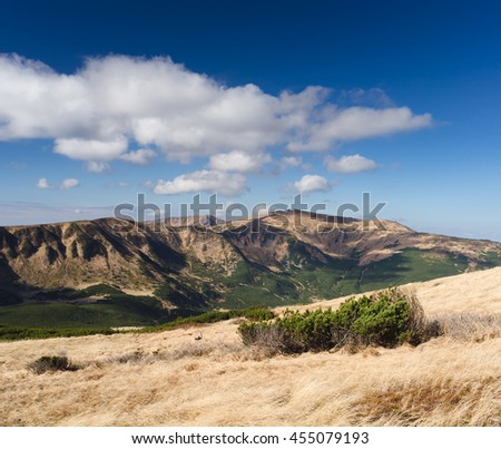 Sunny autumn landscape in the mountains. Dry grass on the slope. Blue sky with cumulus clouds. Carpathians, Ukraine, Europe - stock photo
