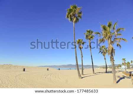 Sunny Day at the Beach with Palm Trees, Southern California - stock photo
