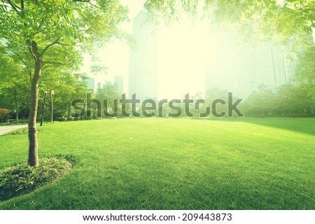sunny day in park - stock photo