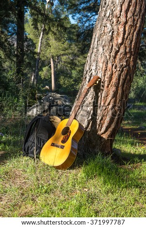 Sunny day, tourist put backpack on the grass, and near a guitar leaning against a pine tree Correcting the white balance - stock photo