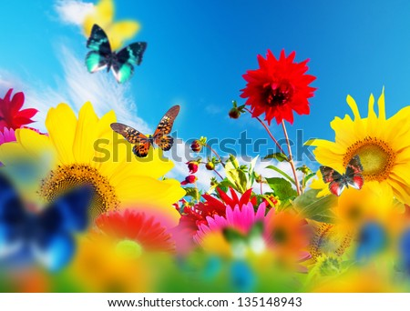 Sunny garden of flowers and butterflies. Colors of spring and summer - stock photo