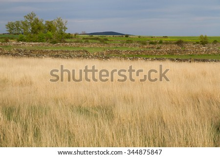 Sunny landscape with grassy meadows in spring. With the background cuttlefish and fences or stone walls dibiden plots  - stock photo