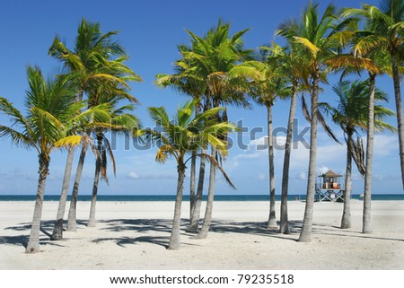 Sunny Miami Beach - stock photo