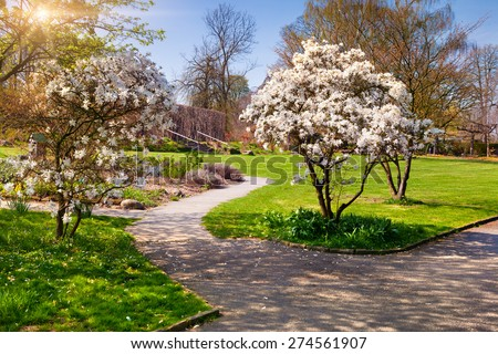 Sunny spring morning in the botanical garden of Essen town. Beautiful outdoor scenery in German, Europe. - stock photo