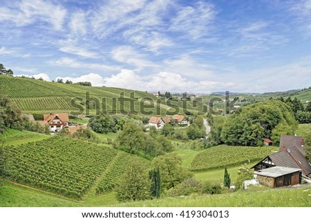 sunny summer day in a Black Forest village with many vineyards, Germany - stock photo