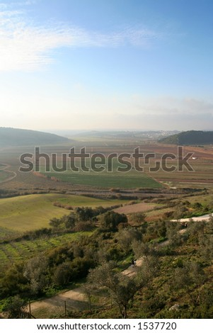 Sunny valley - stock photo